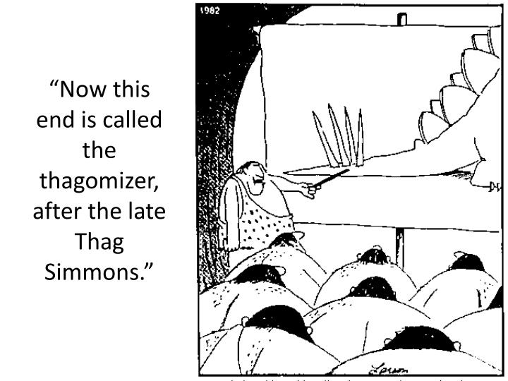 """Now this end is called the thagomizer, after the late Thag Simmons."""