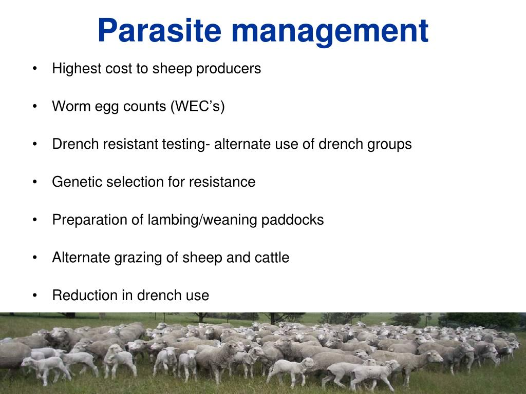 Parasite management
