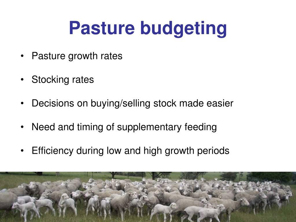 Pasture budgeting