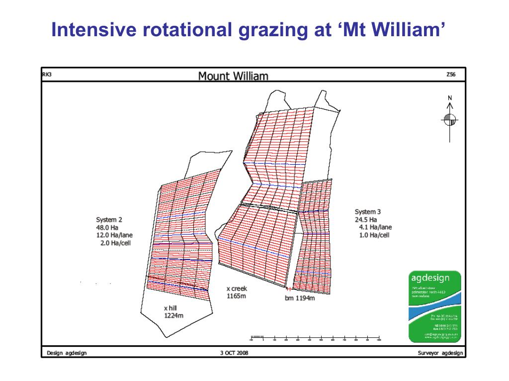 Intensive rotational grazing at 'Mt William'