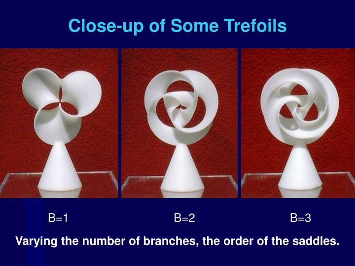 Close-up of Some Trefoils