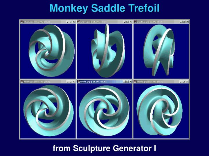Monkey Saddle Trefoil