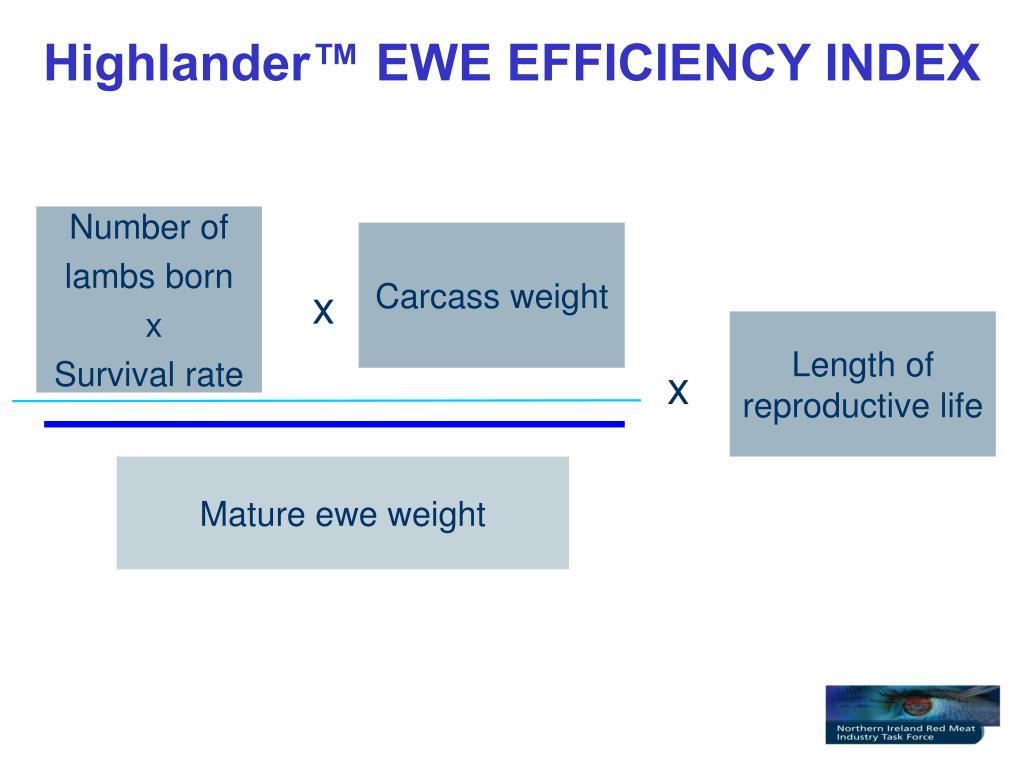 Highlander™ EWE EFFICIENCY INDEX