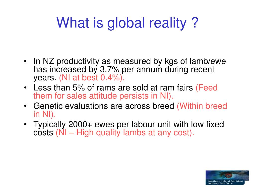 What is global reality ?