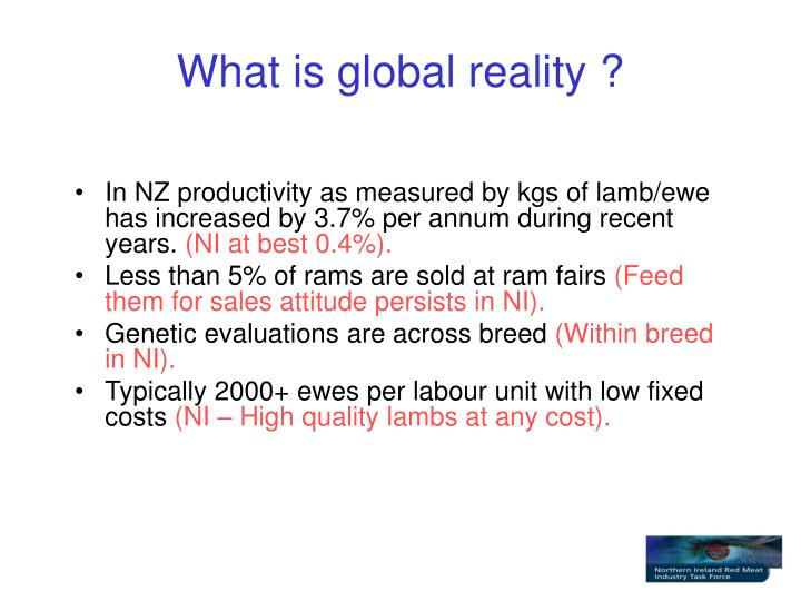 What is global reality