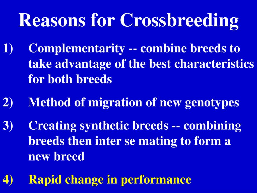 Reasons for Crossbreeding