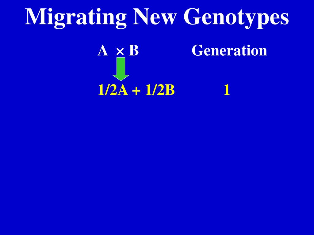 Migrating New Genotypes