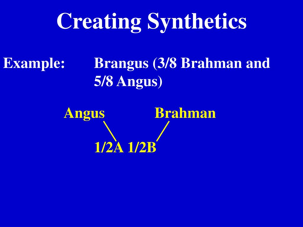 Creating Synthetics