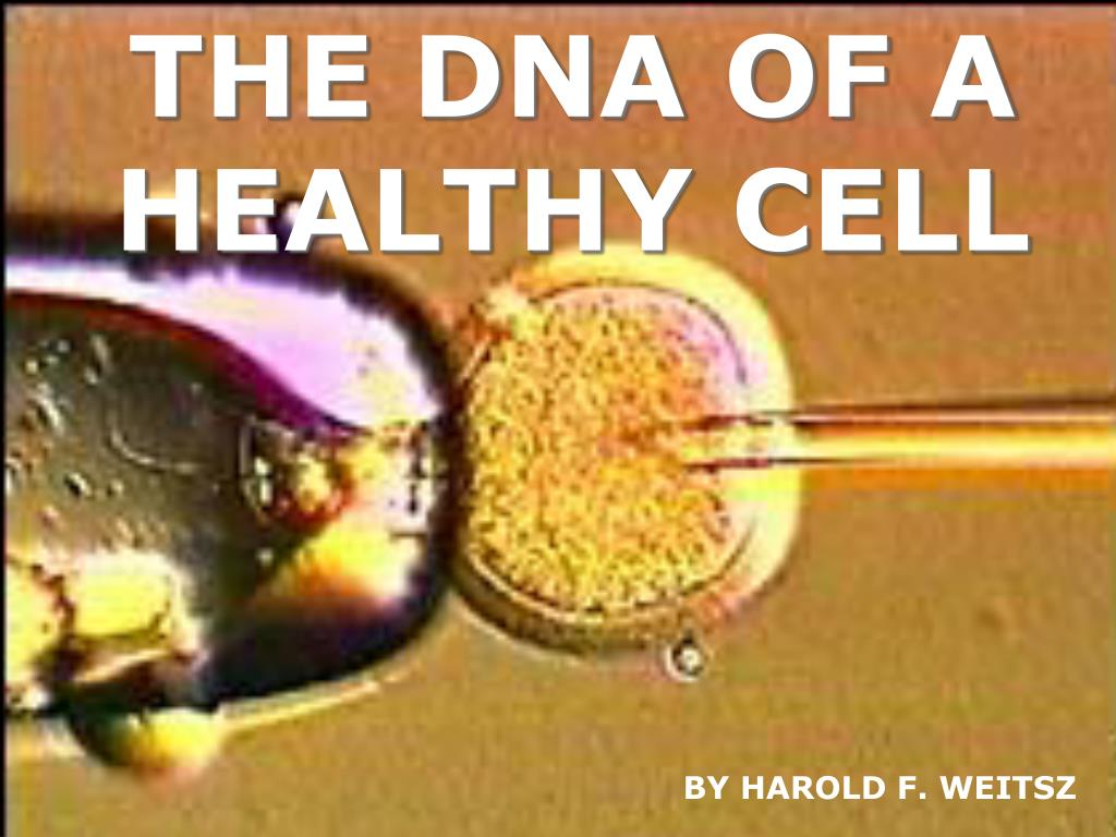 THE DNA OF A HEALTHY CELL