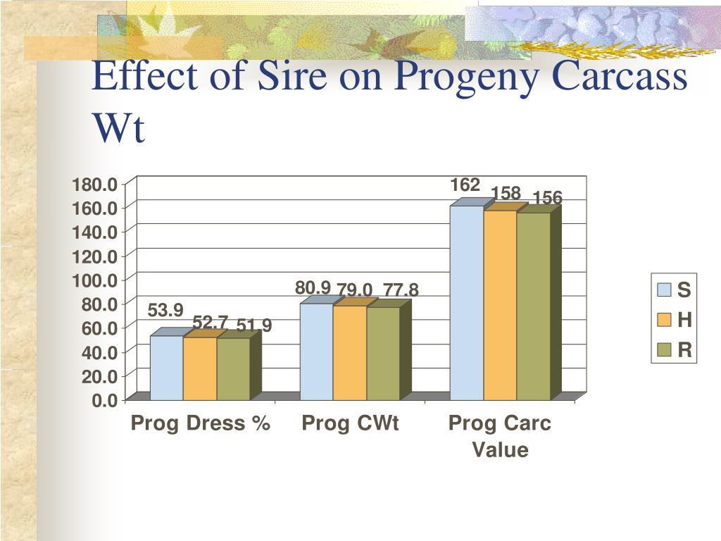 Effect of Sire on Progeny Carcass Wt