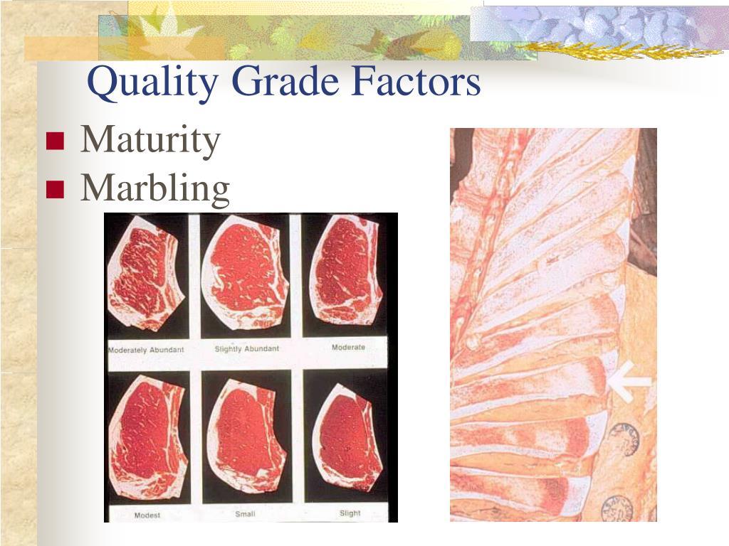 Quality Grade Factors