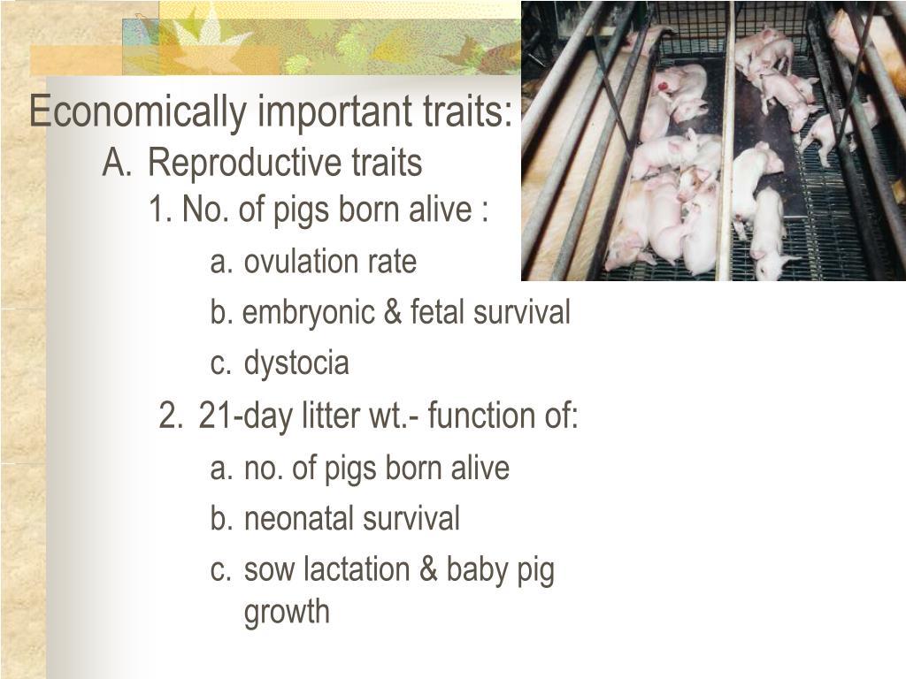 Economically important traits: