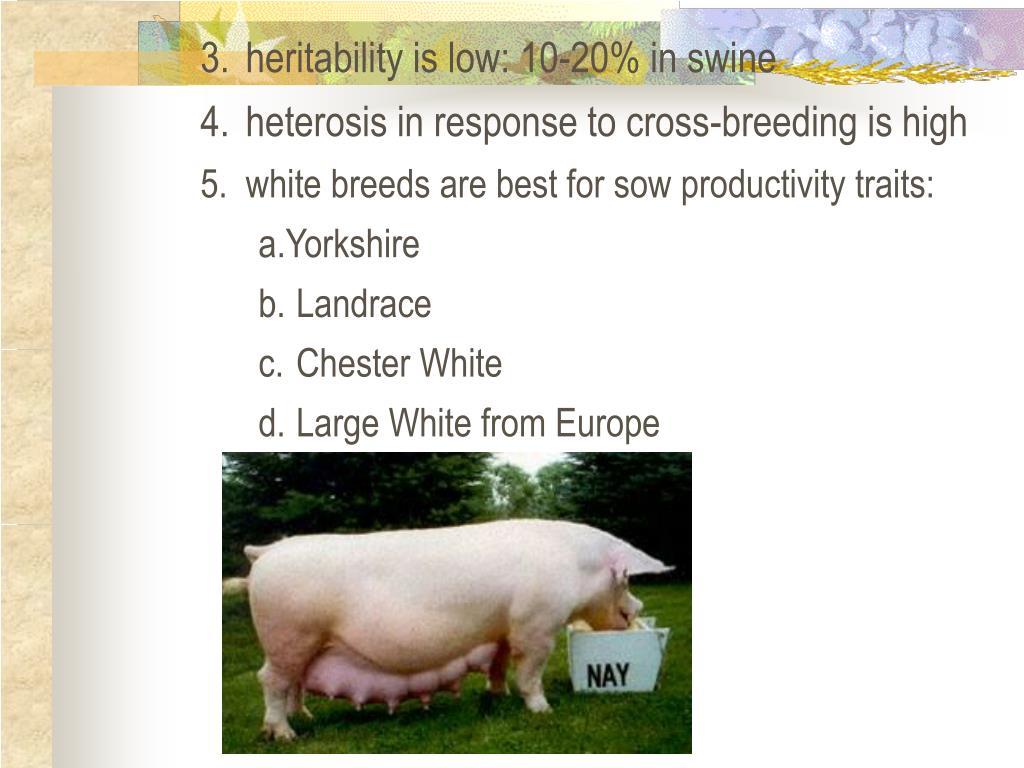 3.heritability is low: 10-20% in swine