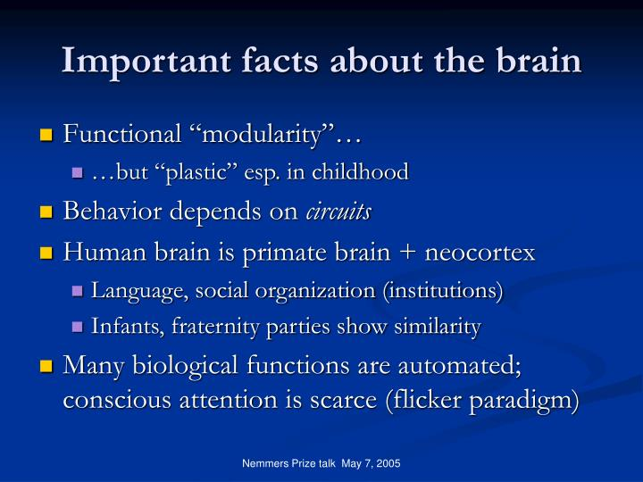 Important facts about the brain