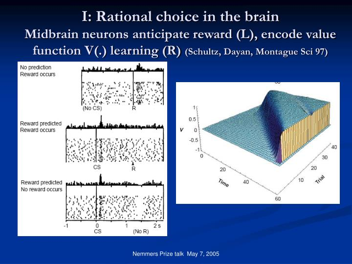 I: Rational choice in the brain