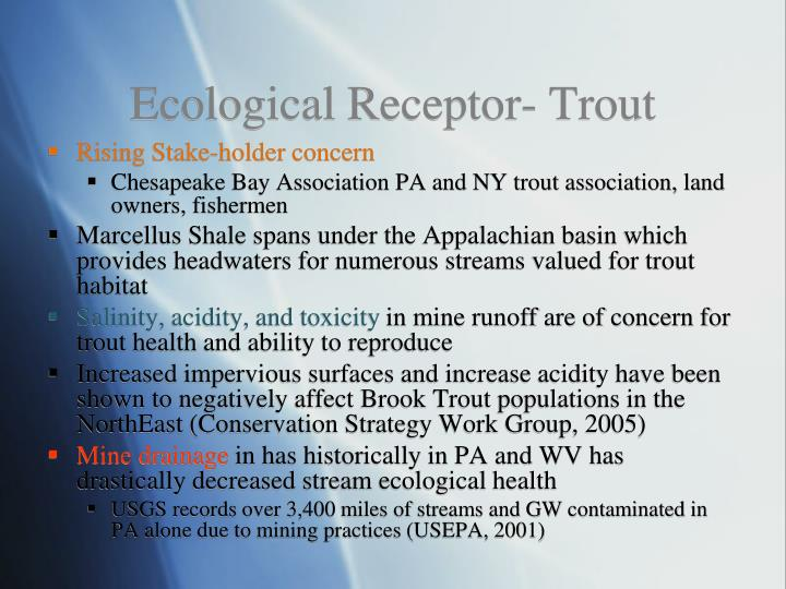 Ecological Receptor- Trout