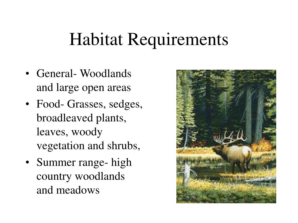 Habitat Requirements