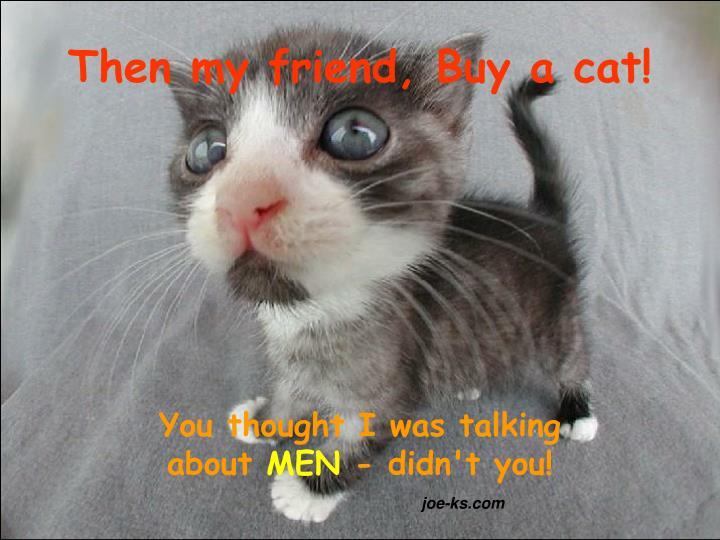 Then my friend, Buy a cat!