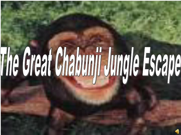 The Great Chabunji Jungle Escape