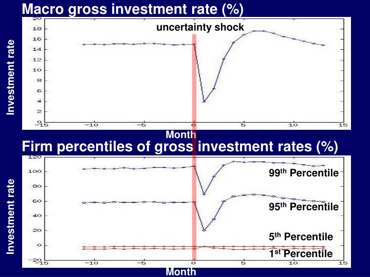 Macro gross investment rate (%)