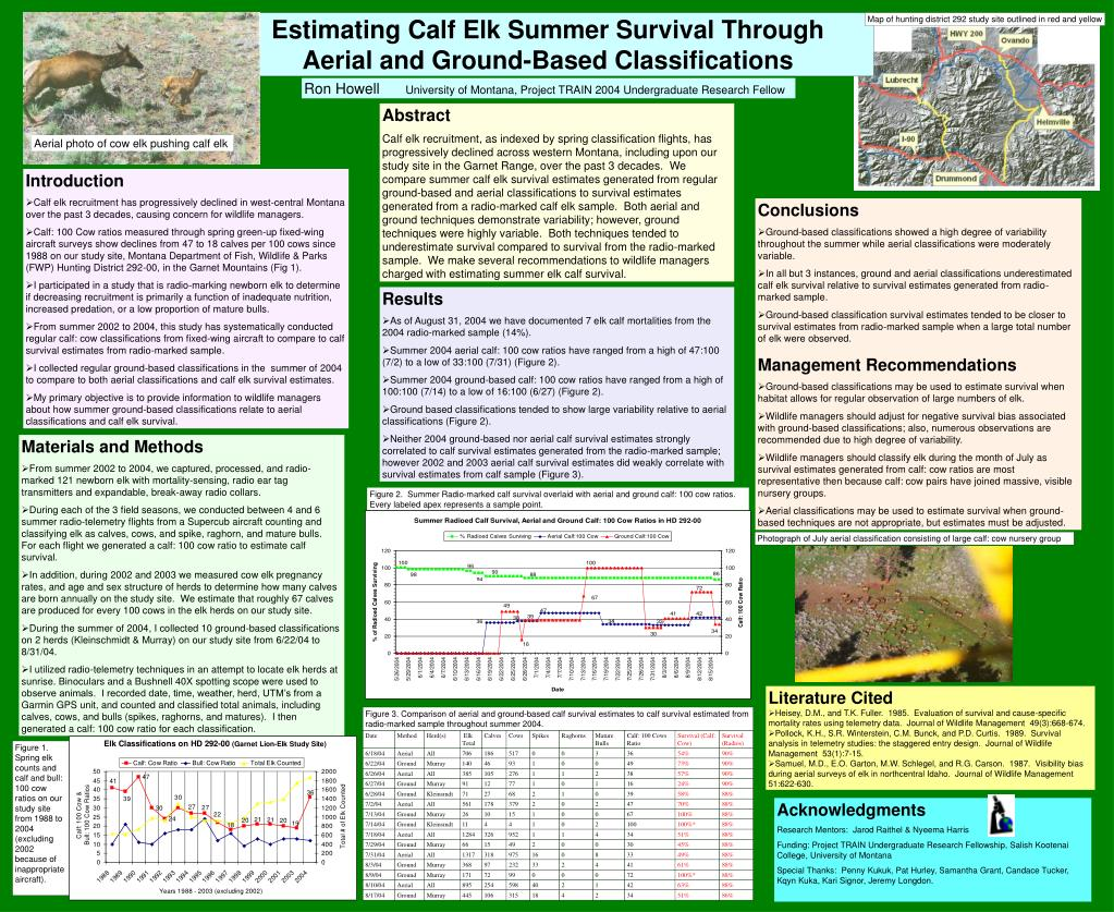 Estimating Calf Elk Summer Survival Through                   Aerial and Ground-Based Classifications