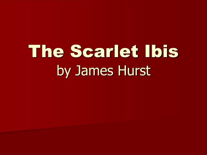 "essays on the scarlet ibis by james hurst ""the scarlet ibis"", a short story by james hurst, demonstrates how selfishness and greed can be used for the betterment of others as shown in this short story, doodle's brother's perseverance comes only from selfishness, greed and pride in the end guilt takes over, bringing out the brother's love for doodle."