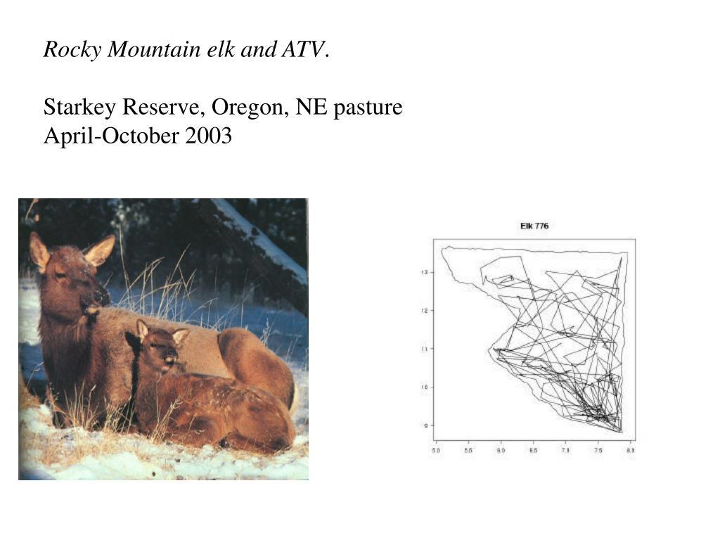 Rocky Mountain elk and ATV