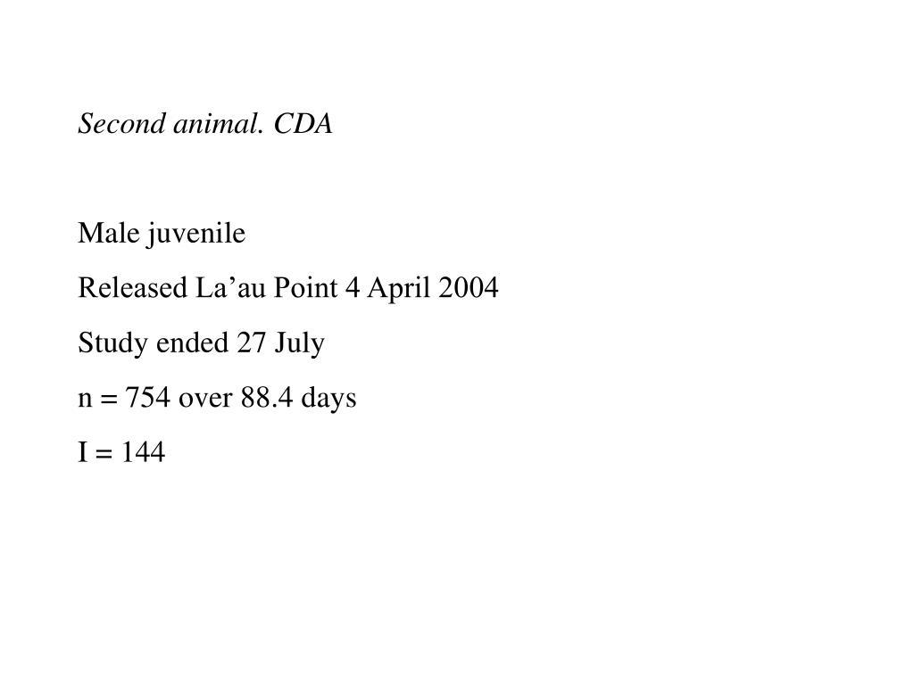 Second animal. CDA