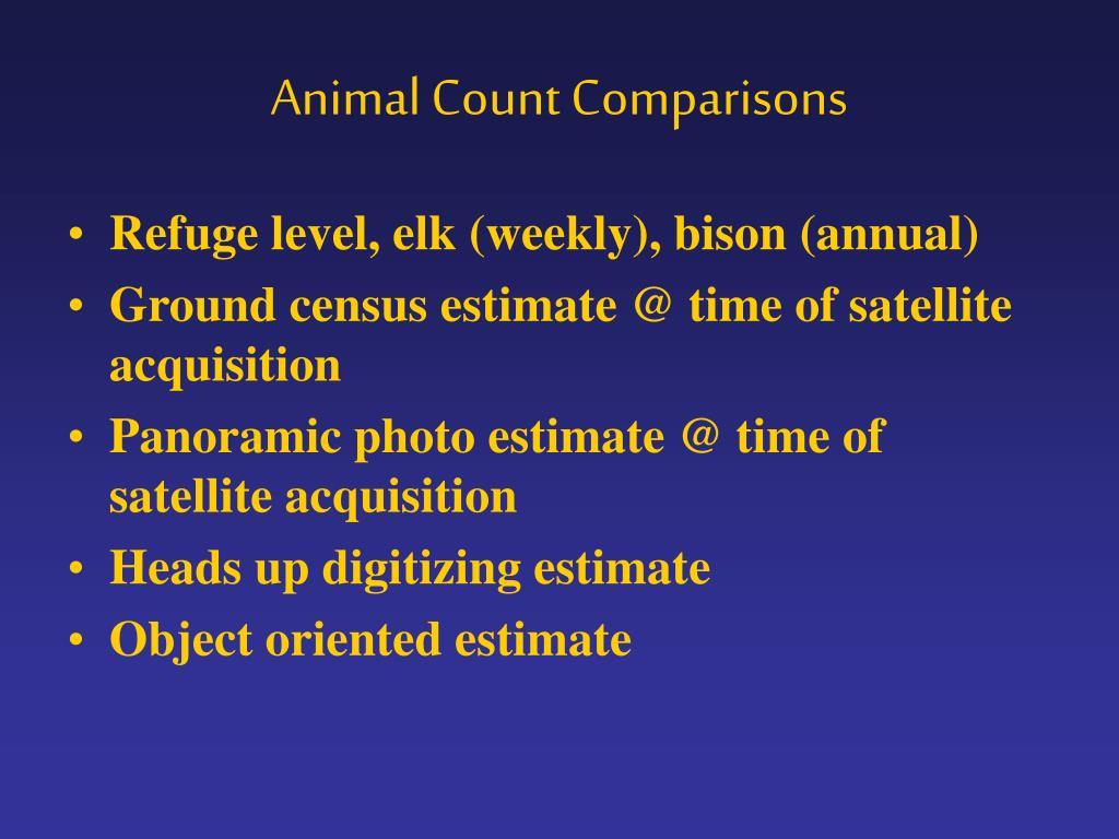 Animal Count Comparisons