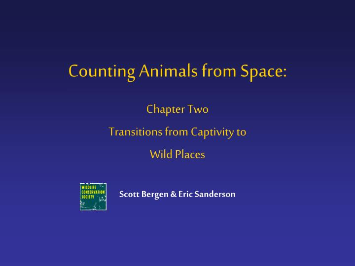 Counting animals from space