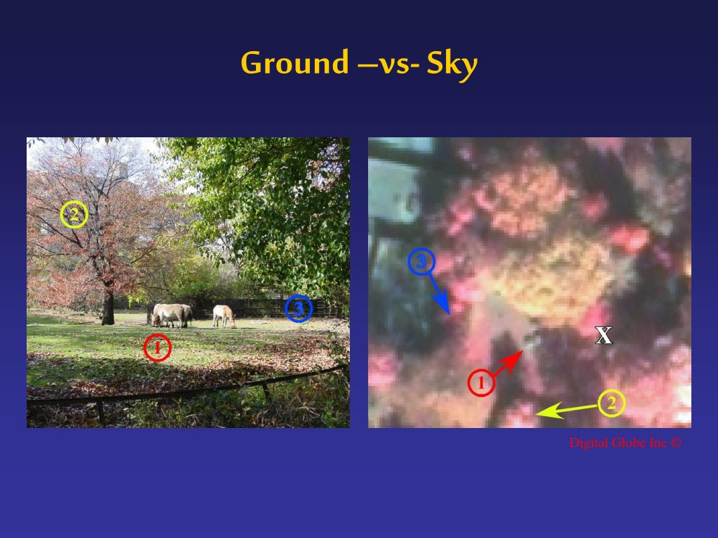 Ground –vs- Sky