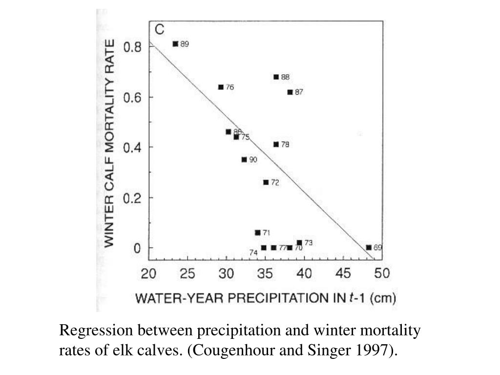 Regression between precipitation and winter mortality rates of elk calves. (Cougenhour and Singer 1997).
