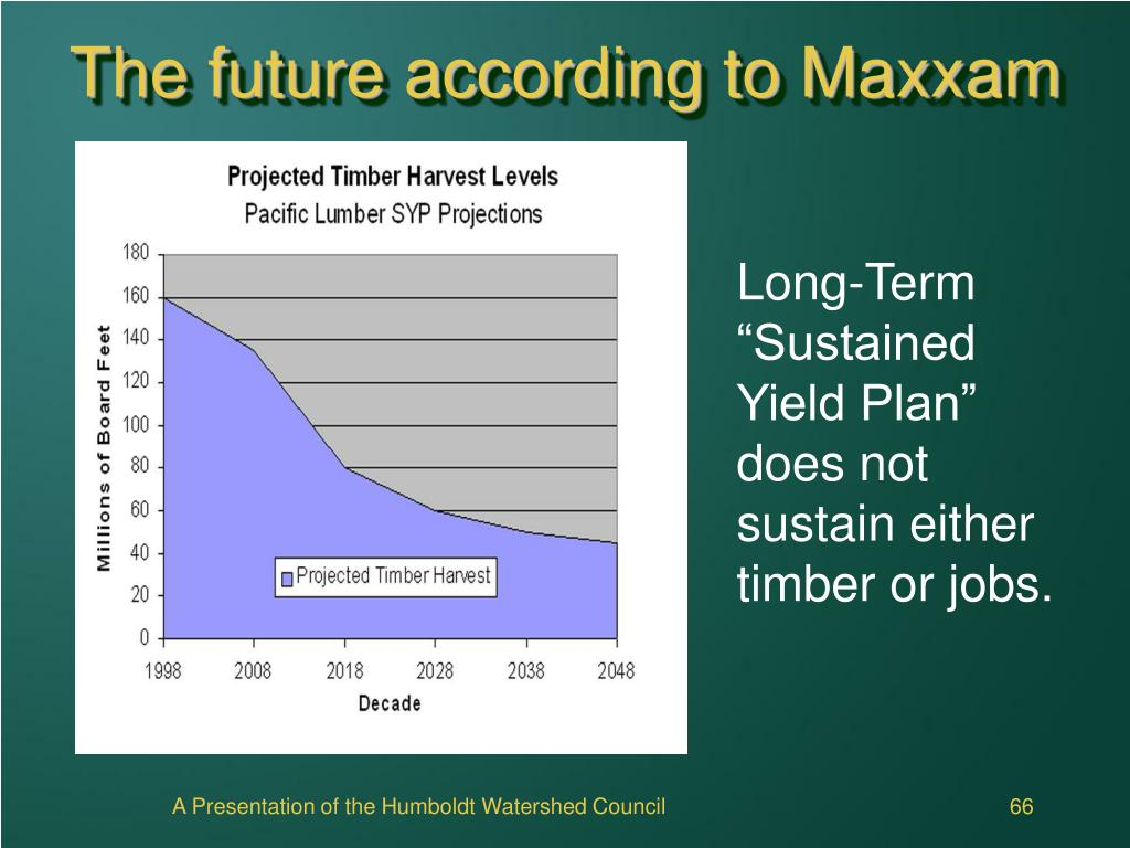 The future according to Maxxam