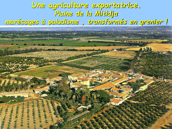 Une agriculture exportatrice.