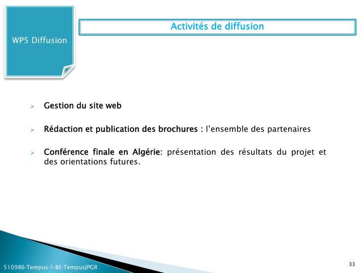 WP5 Diffusion