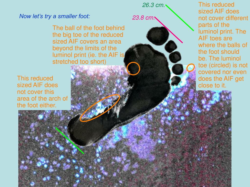 This reduced sized AIF does not cover different parts of the luminol print. The AIF toes are where the balls of the foot should be. The luminol toe (circled) is not covered nor even does the AIF get close to it.