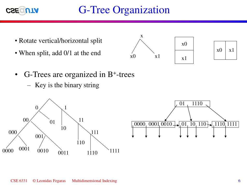 G-Tree Organization