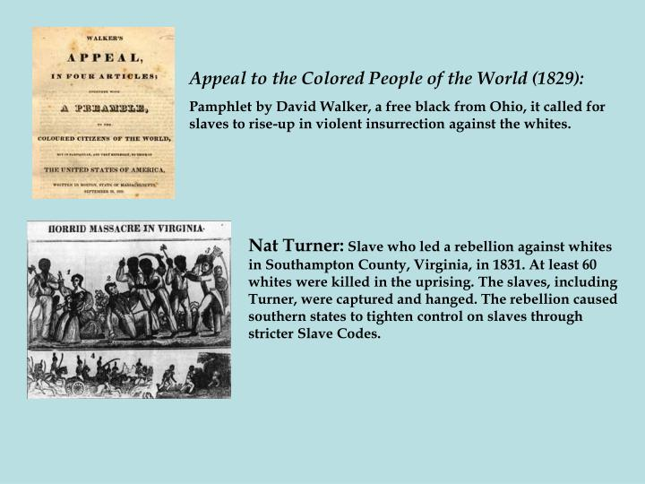 Appeal to the Colored People of the World (1829):