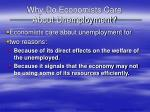 why do economists care about unemployment