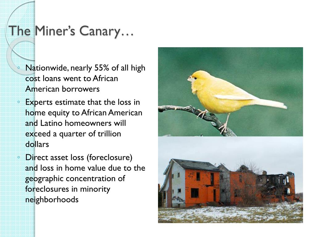 The Miner's Canary…