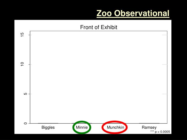 Zoo Observational