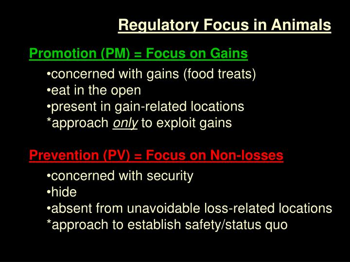 Regulatory Focus in Animals