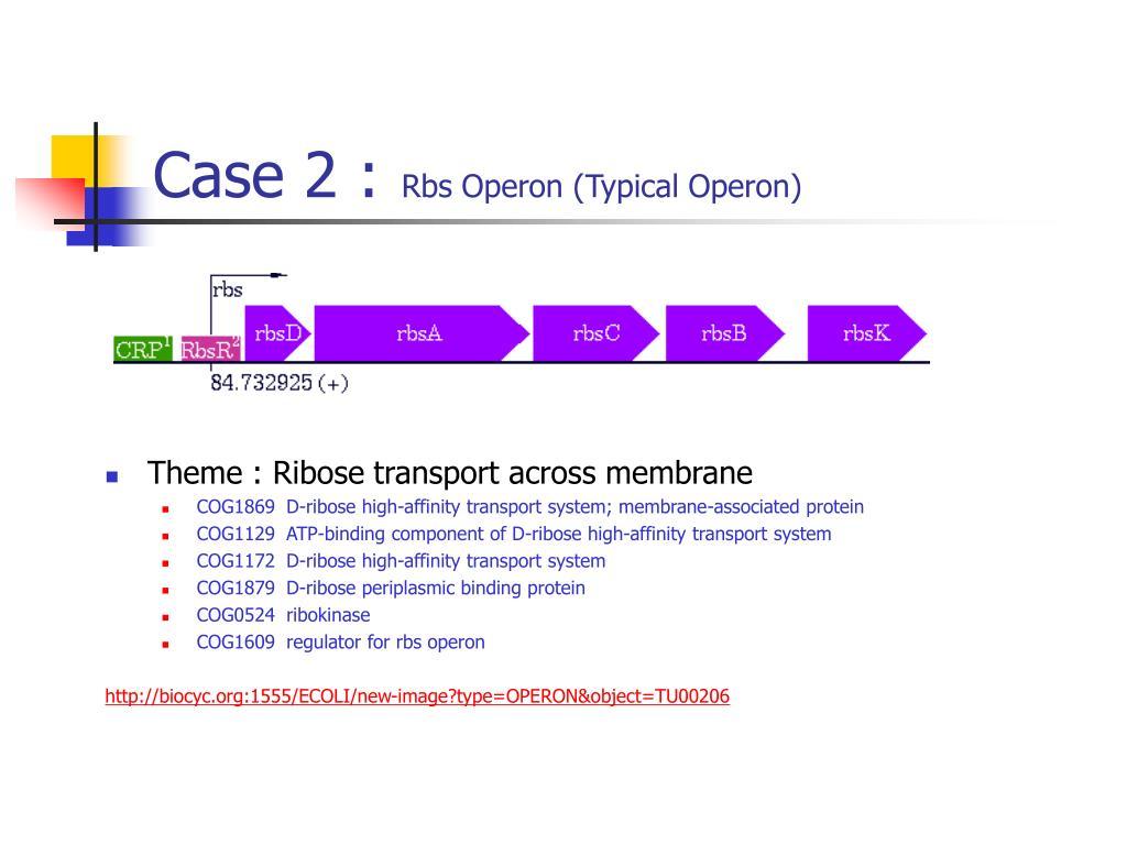 Case 2 :