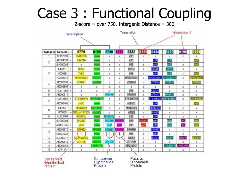 Case 3 : Functional Coupling