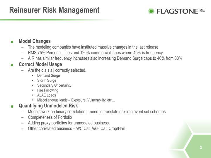 Reinsurer Risk Management