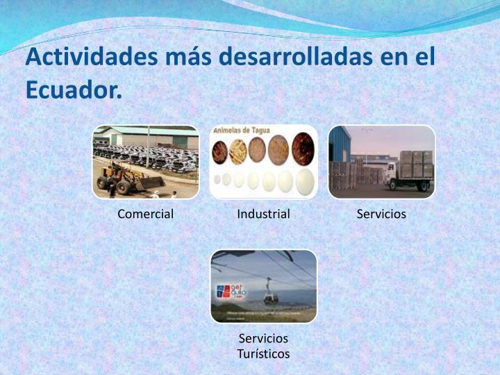Actividades más desarrolladas en el Ecuador.