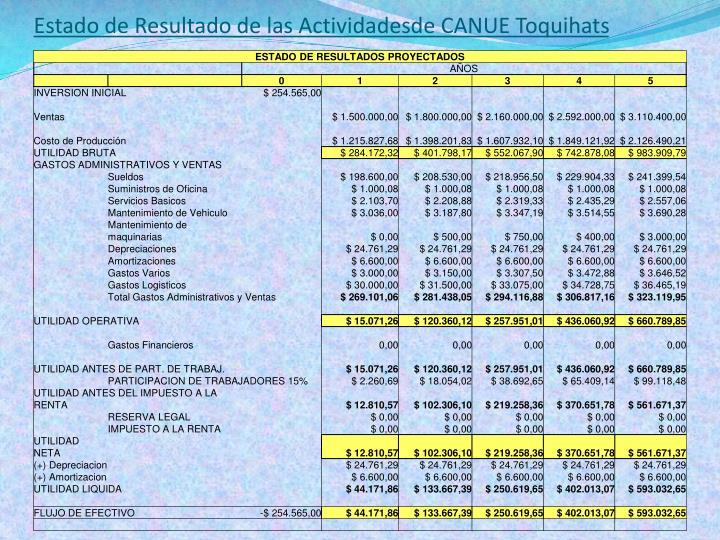 Estado de Resultado de las Actividadesde CANUE Toquihats