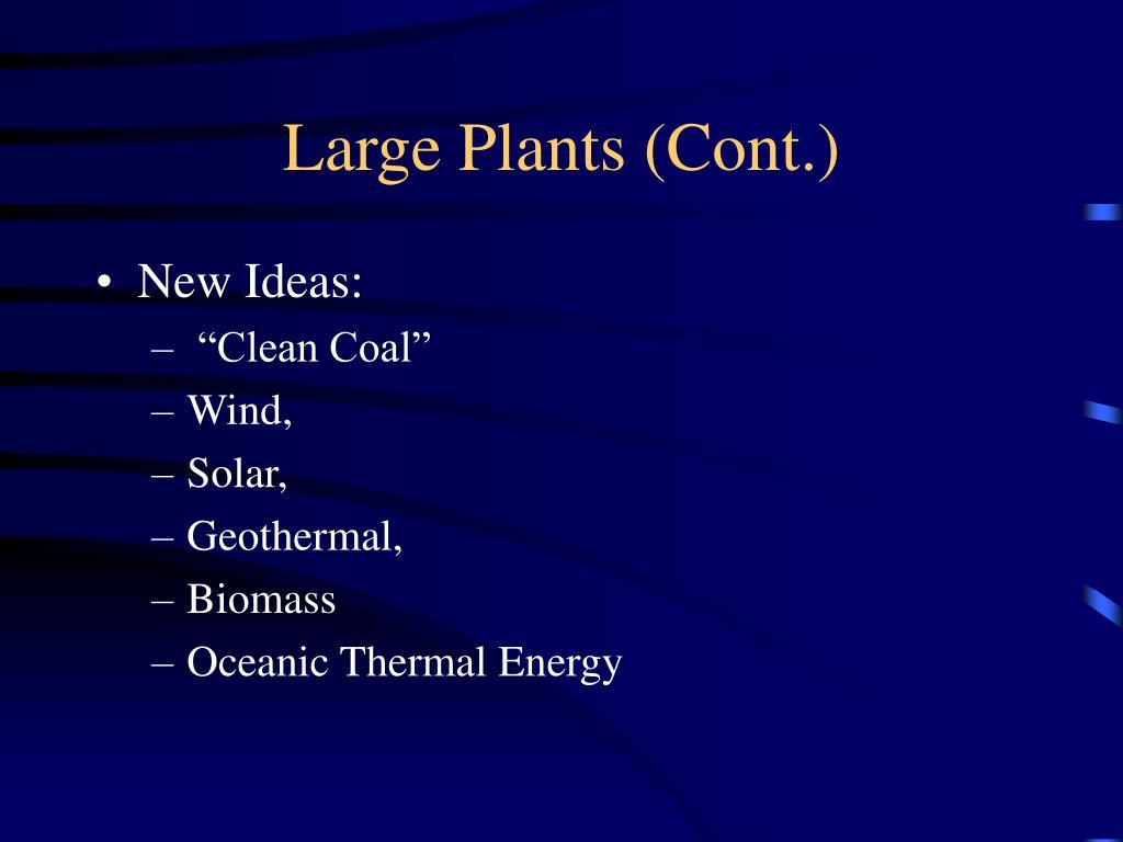 Large Plants (Cont.)