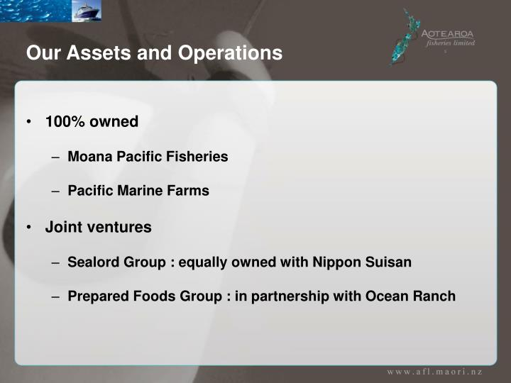 Our assets and operations