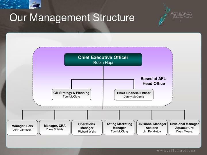 Our Management Structure